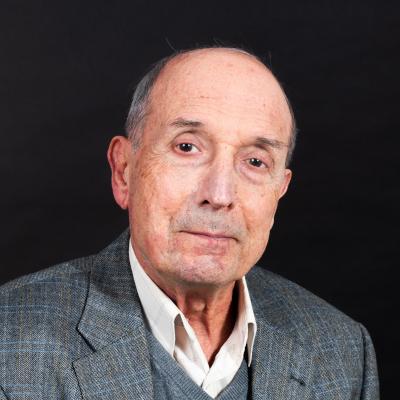 Vitaliy Shubin